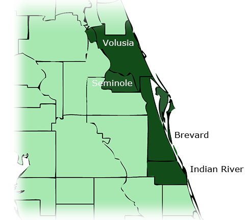 Rockledge, Melbourne and Palm Bay Florida Southern Pine Lumber location