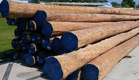 Southern Pine Lumber | GreenHeart Piling